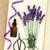 lawendy · esencja · kwiaty · butelki - zdjęcia stock © marilyna