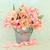 tulipa · flor · beleza · flores · arco-íris · cores - foto stock © marilyna