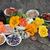 owoców · suszy · używany · chińczyk · porcelana - zdjęcia stock © marilyna
