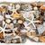 zeester · drijfhout · schelpen · Rood · abstract - stockfoto © marilyna