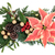 Poinsettia Decoration stock photo © marilyna