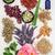 chinês · erva · ingredientes · usado · tradicional - foto stock © marilyna