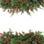 Spruce and Cedar Cypress Border stock photo © marilyna