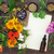 garrafa · flor · água · folha · saúde - foto stock © marilyna