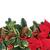hiver · flore · frontière · faune · détacher · rouge - photo stock © marilyna