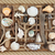 driftwood and sea shell abstract stock photo © marilyna