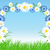 bloemen · witte · familie · gras · natuur - stockfoto © marisha