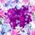 magnolia · alma · virágok · absztrakt · háttér · légy - stock fotó © marisha