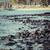 cocotier · arbre · plage · de · sable · Hawaii · ciel · eau - photo stock © mariusz_prusaczyk