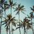 part · Hawaii · USA · tengerpart · tájkép · tenger - stock fotó © mariusz_prusaczyk
