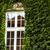cubierto · hiedra · pequeño · capilla · paredes · edificio - foto stock © mariusz_prusaczyk