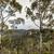 mavi · dağlar · Avustralya · gökyüzü · orman · ışık - stok fotoğraf © Mariusz_Prusaczyk