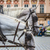 horse carriage waiting for tourists at the old square in prague stock photo © mariusz_prusaczyk