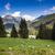 chata · dolinie · góry · krajobraz - zdjęcia stock © mariusz_prusaczyk