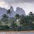 puesta · de · sol · palmera · cielo · océano · Hawai · EUA - foto stock © mariusz_prusaczyk