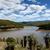 természet · tartalék · felhők · alacsony · szint · víz - stock fotó © markdescande