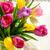 букет · тюльпаны · белый · красивой · фон - Сток-фото © markova64el