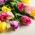 bouquet · tulipes · blanche · belle · fond - photo stock © markova64el
