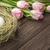 пасхальных · яиц · соломы · гнезда · тюльпаны · розовый - Сток-фото © markova64el