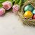 пасхальных · яиц · соломы · гнезда · Пасхальный · заяц · Cookies · тюльпаны - Сток-фото © markova64el