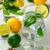 лимонад · стекла · белый · домашний · лет - Сток-фото © markova64el