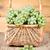 basket with fresh green grapes stock photo © marylooo