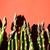 köteg · friss · zöld · spárga · szalag · rusztikus - stock fotó © marylooo