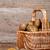 basket with fresh potatoes stock photo © marylooo