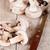 champignon · voedsel · kok · maaltijd · macro - stockfoto © marylooo