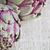 ruw · paars · citroen · selectieve · aandacht · groene · groep - stockfoto © marylooo