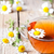 cup of tea with chamomile flowers stock photo © marylooo