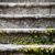 oude · stappen · Italië · klooster · licht · achtergrond - stockfoto © marylooo