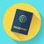 pasaporte · plantilla · ilustración · abierto · documento - foto stock © marysan