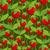 rosa · pattern · fragola · foglie · fiori - foto d'archivio © maryvalery