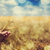 farmer hand keep green wheat spikelet stock photo © massonforstock