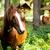photo of beautiful adult horse standing on the wonderful village stock photo © massonforstock