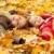 ősz · családi · portré · levelek · kert · lány · természet - stock fotó © massonforstock
