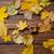 halloween · hediye · kutusu · dizayn · turuncu · kutu - stok fotoğraf © massonforstock