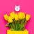 желтый · тюльпаны · Cute · подарок · Cool - Сток-фото © massonforstock