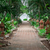 tropische · tuin · weg · zee · strand · palmbomen - stockfoto © master1305
