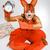mulher · jovem · imagem · vermelho · esquilo · horror · olhando - foto stock © master1305