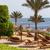 美しい · 熱帯ビーチ · エジプト · 手のひら · パラソル · 海 - ストックフォト © master1305