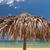 guarda-sol · colorido · areia · praia · céu · sol - foto stock © master1305