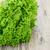 植木屋 · レタス · 緑 · サラダ · 野菜 · 頭 - ストックフォト © master1305