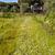 alan · çayır · bahar · beyaz · papatyalar - stok fotoğraf © master1305