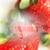 citaat · label · realistisch · wazig · rijp · aardbeien - stockfoto © maximmmmum