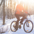 mountain biker riding bike on the snowy trail in the beautiful winter forest lit by sun stock photo © maxpro
