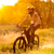 cyclist riding the bike on trail in the summer forest at sunrise stock photo © maxpro