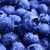Background of Fresh Ripe Sweet Blueberries Covered with Water Drops stock photo © maxpro