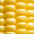 closeup of fresh sweet ripe corn seeds stock photo © maxpro